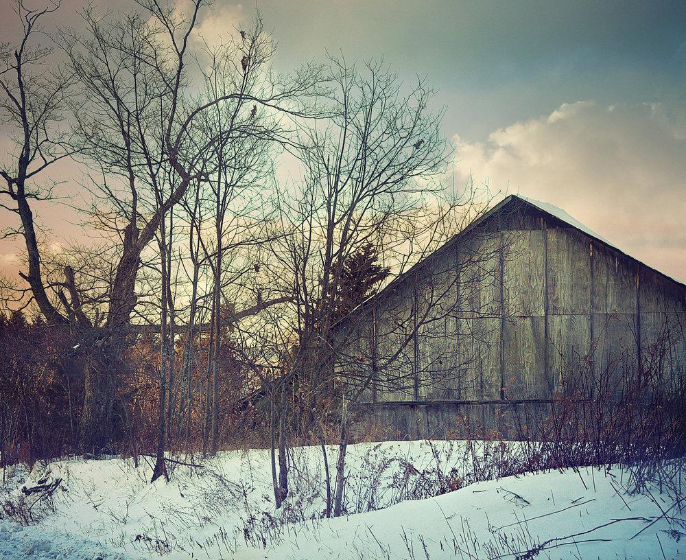 Roger's Farm