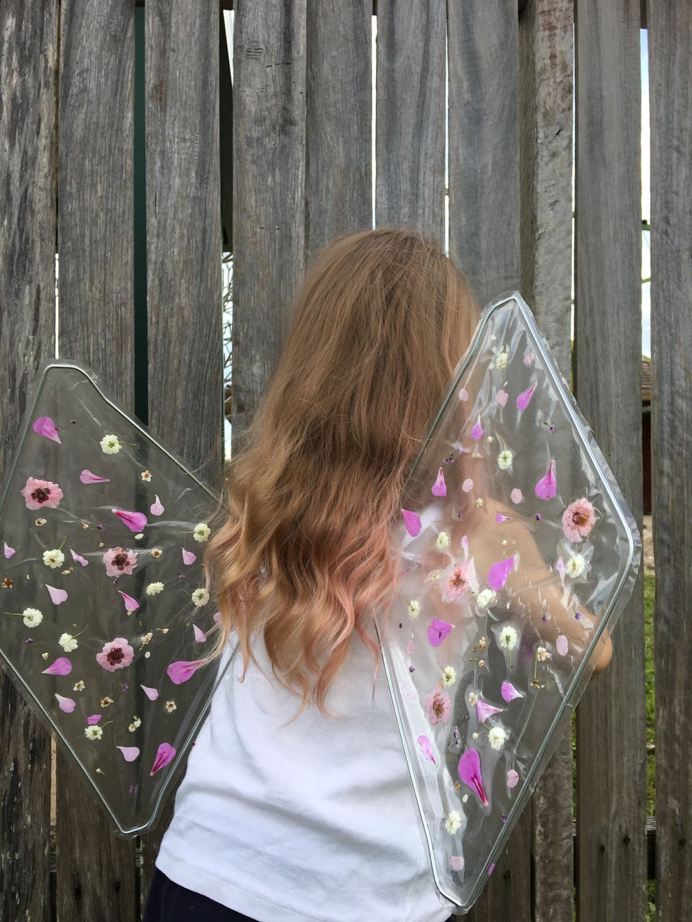 fairy wings back.JPG