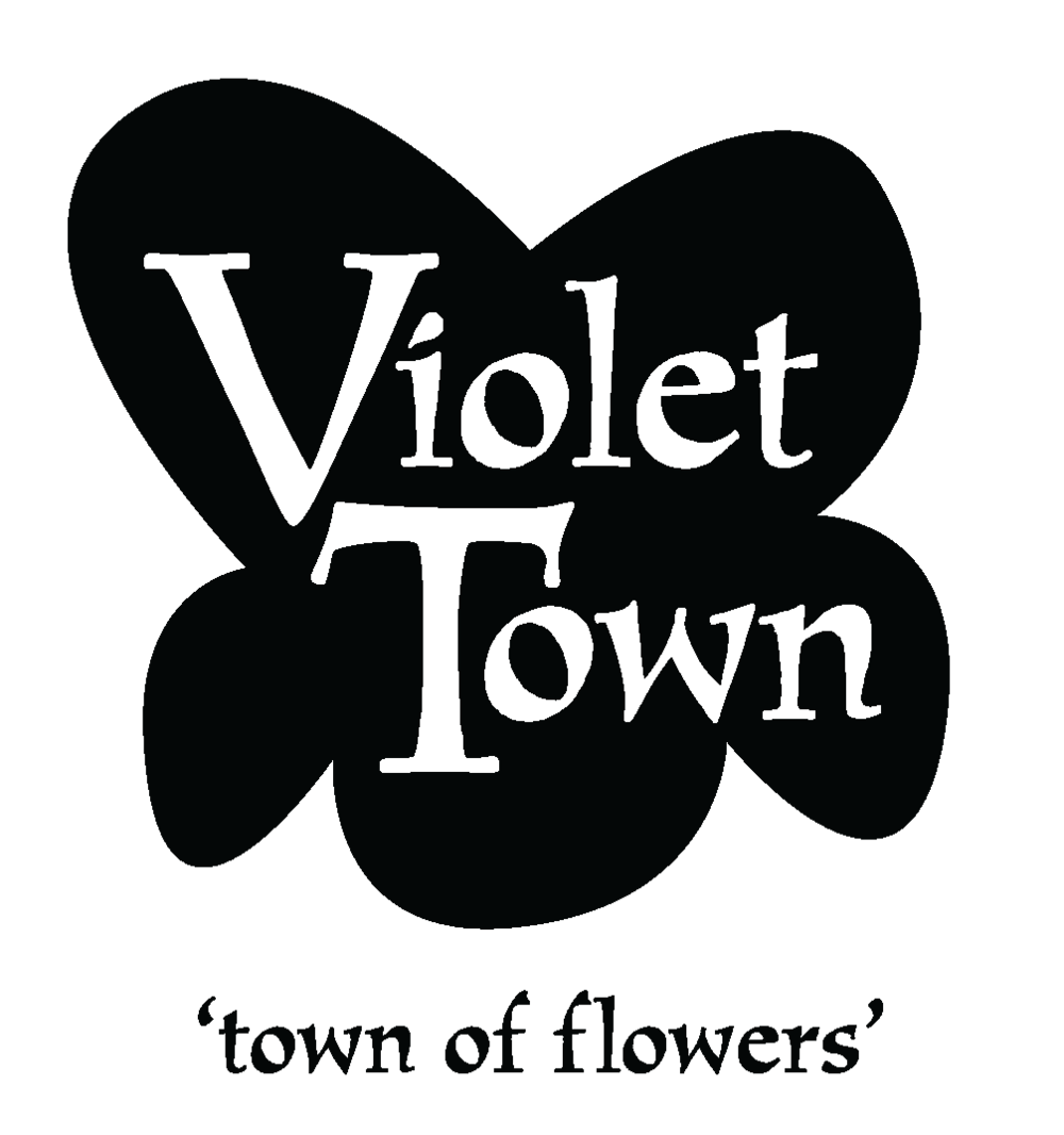 VT Colour Logo w-tag-01.png