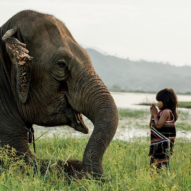 "The ICONIC ""Best Friends"" by Réhahn. Now only available in the secondary market. We currently have ONE print on consignment from a collector. Message us for details.  #art #artwork #fineart #photograph #photoftheday #photography #fineartphotography #limitededition #artist #photographer #artgallery #gallery #creative #portrait #discover #travel #vietnam"