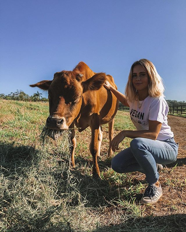 Meet my new friend Aurora, she was born blind and with hearing in only one ear. ⠀ ⠀ Yesterday I got to spend the morning hanging out with Aurora as well as all the other beautiful animals and amazing team at @deathrow_unchained. The team here are all helping to fight save animals from abuse, neglect and death row. ⠀ ⠀ If you're looking to adopt an animal or want to volunteer, give them a follow and check them out 🌱😃 #friendsnotfood #deathrowunchained #animalrescue #animalsanctuary #volunteer #veganism