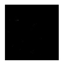 KOA_CPHfoodspace_logo_SORT.png
