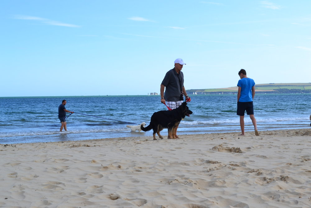 Oakstone beach bbq 2018