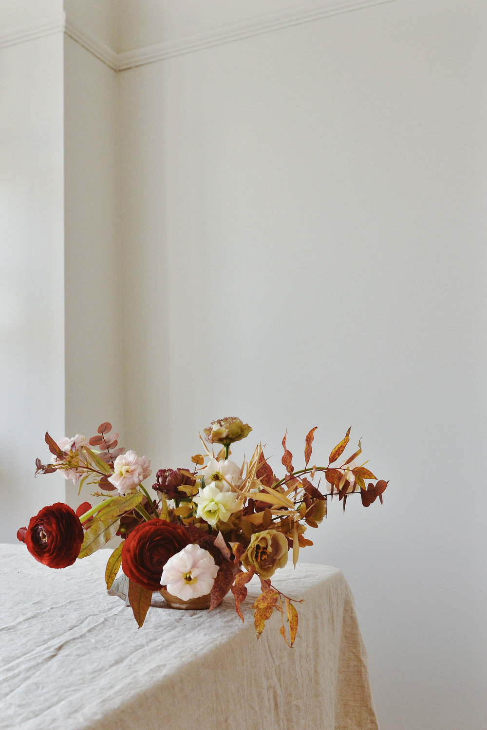 Photography for Flower & Fern