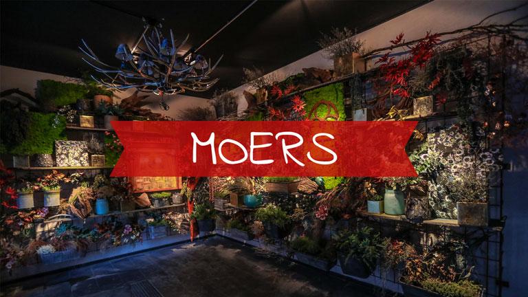 Eatalio Moers    Franz-Haniel-Str. 18, 47443 Moers    +49 (0) 2841 / 88 266 96     moers@eatalio.de      > Online-Reservierung im Eatalio Moers