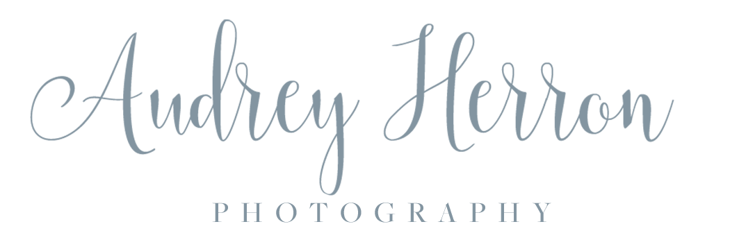 Audrey Herron Photography