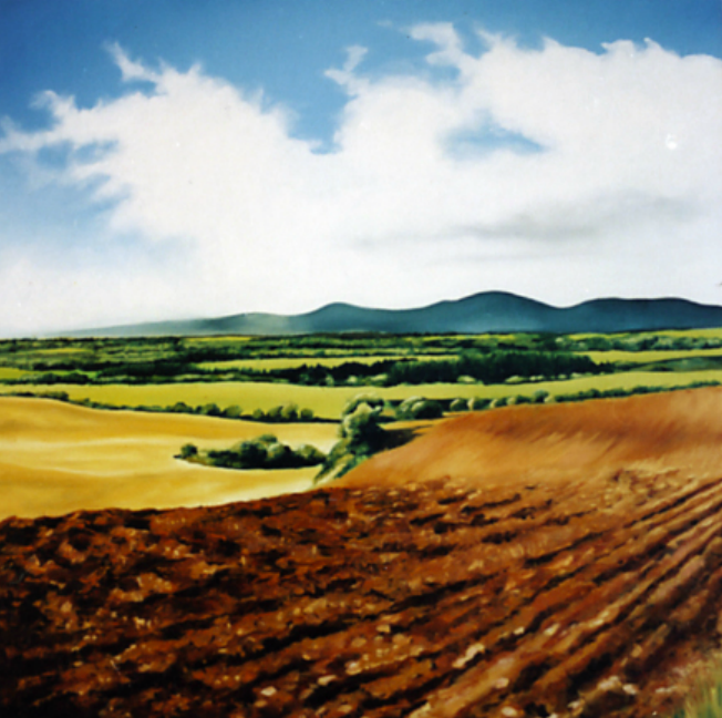 Copy of Ploughed Field