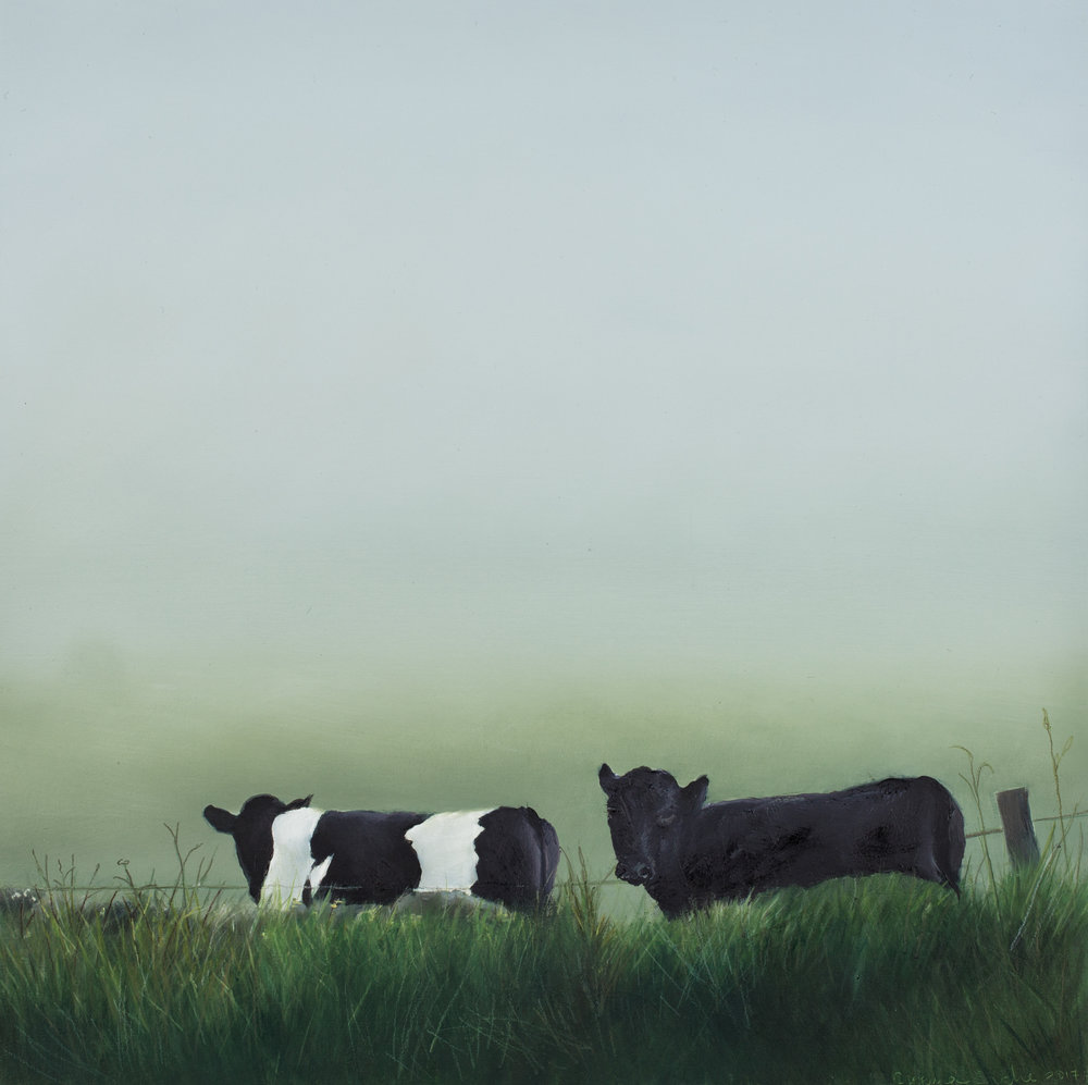 Moody Cows