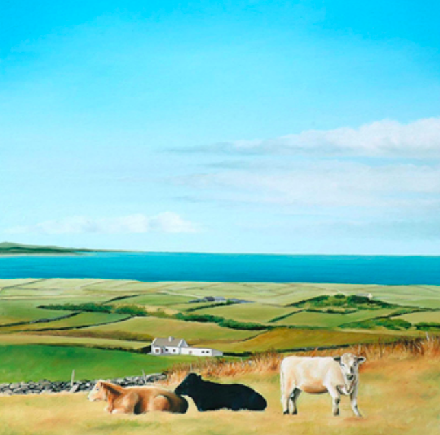 Cows by the Sea, Doolin, Co. Clare
