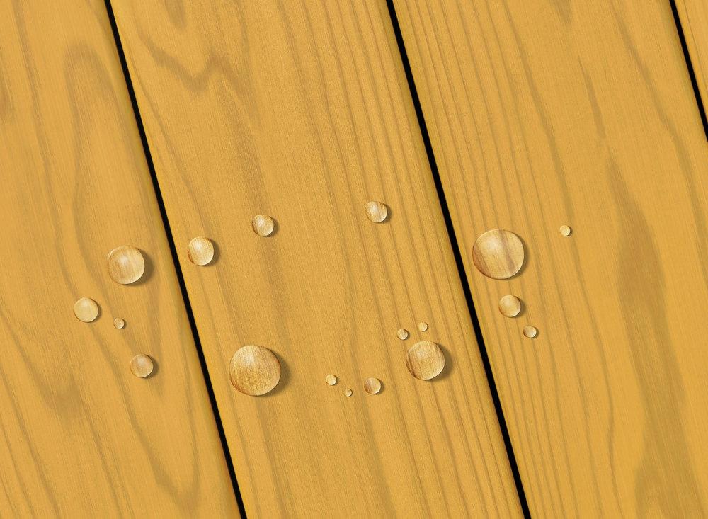 Honey Gold Transparent_.jpg