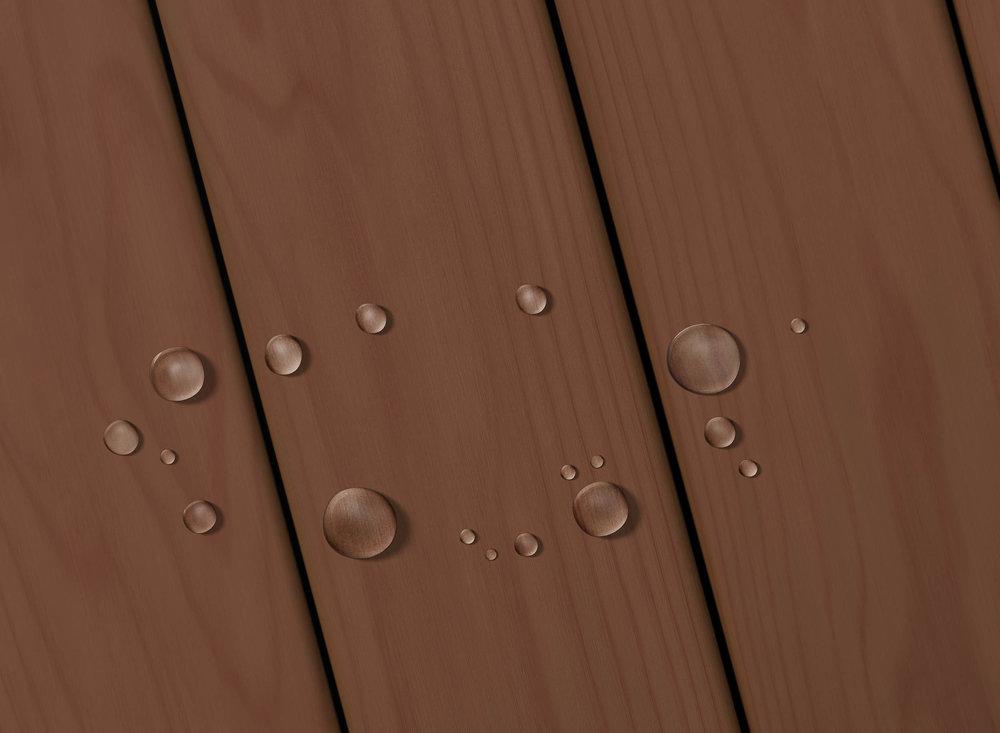 Autumn Brown Solid.jpg