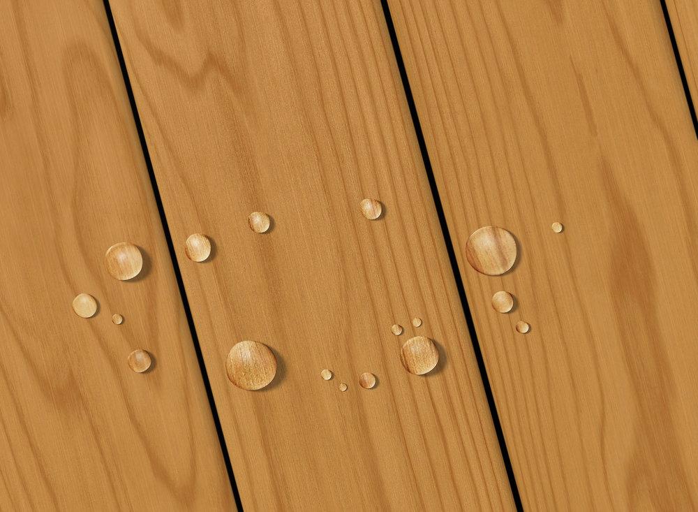 Timber Brown Transparent.jpg