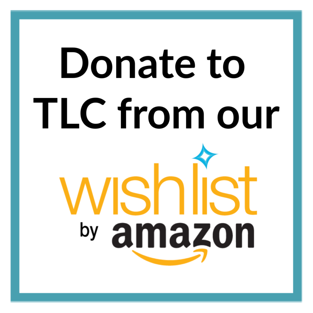 Donate from Amazon Wishlist.png