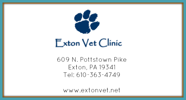 Exton Vet Clinic  is a full service veterinary clinic that offers a range of care including surgical/dental & radiology services. They also offer cat boarding, limited grooming, house call & transport services.  Read More