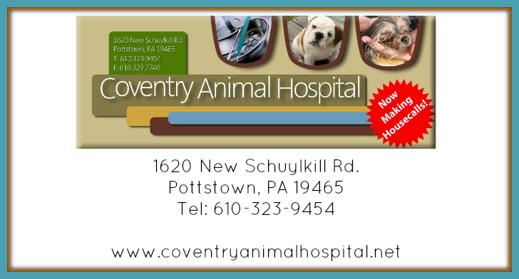 "Coventry Animal Hospital  is a full service veterinary clinic that treats dogs, cats, rabbits & ""pocket pets,"" as well as provides grooming, boarding, house call and pharmacy services.  Read More"