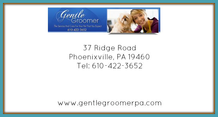 GG-slider-2.png