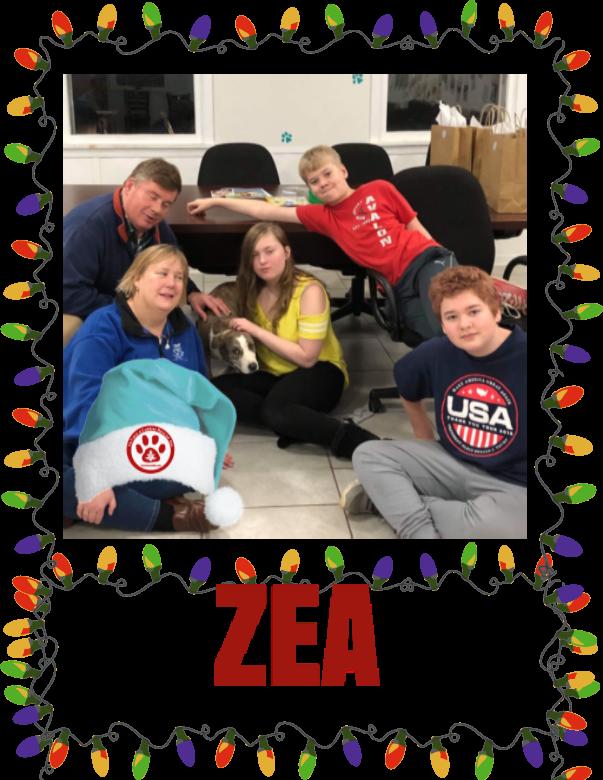 ZEA.PNG