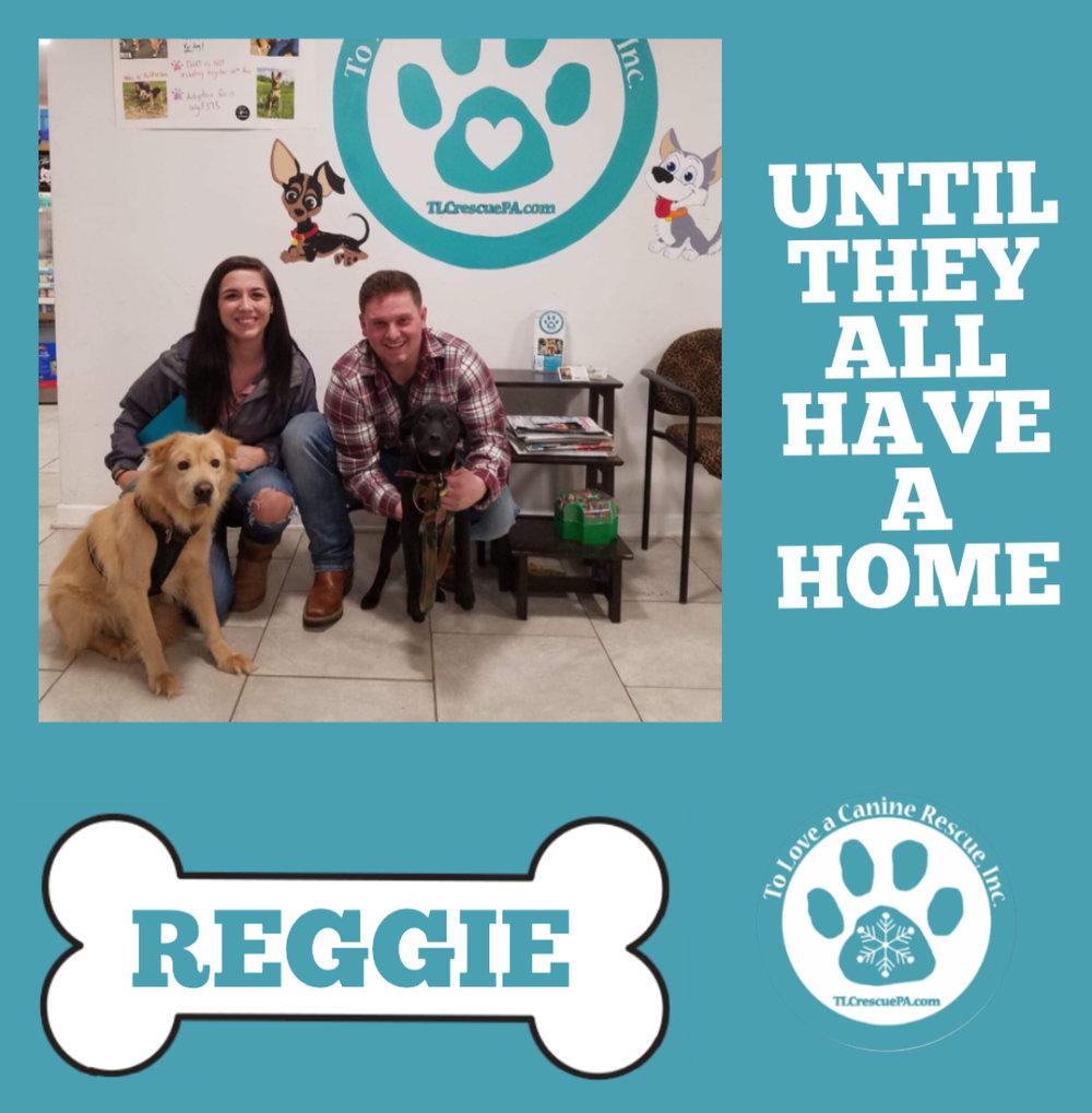 Reggie.PNG