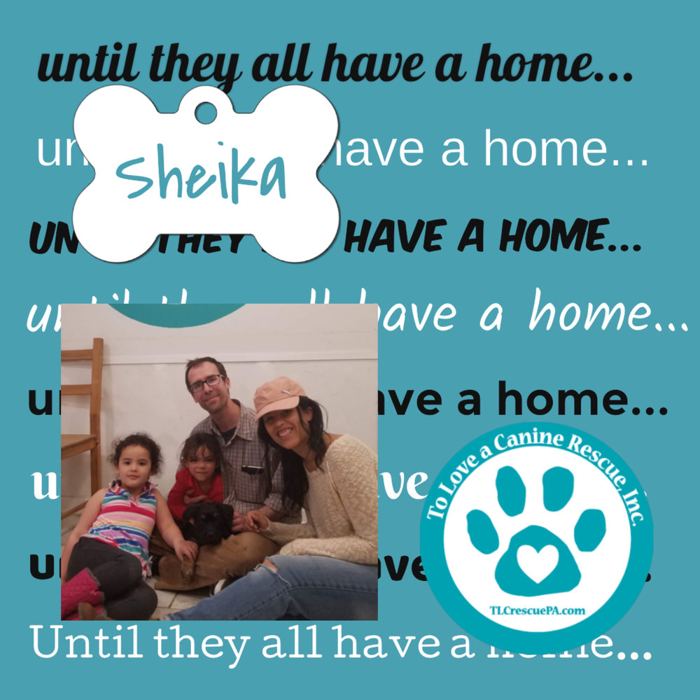 Sheika.PNG