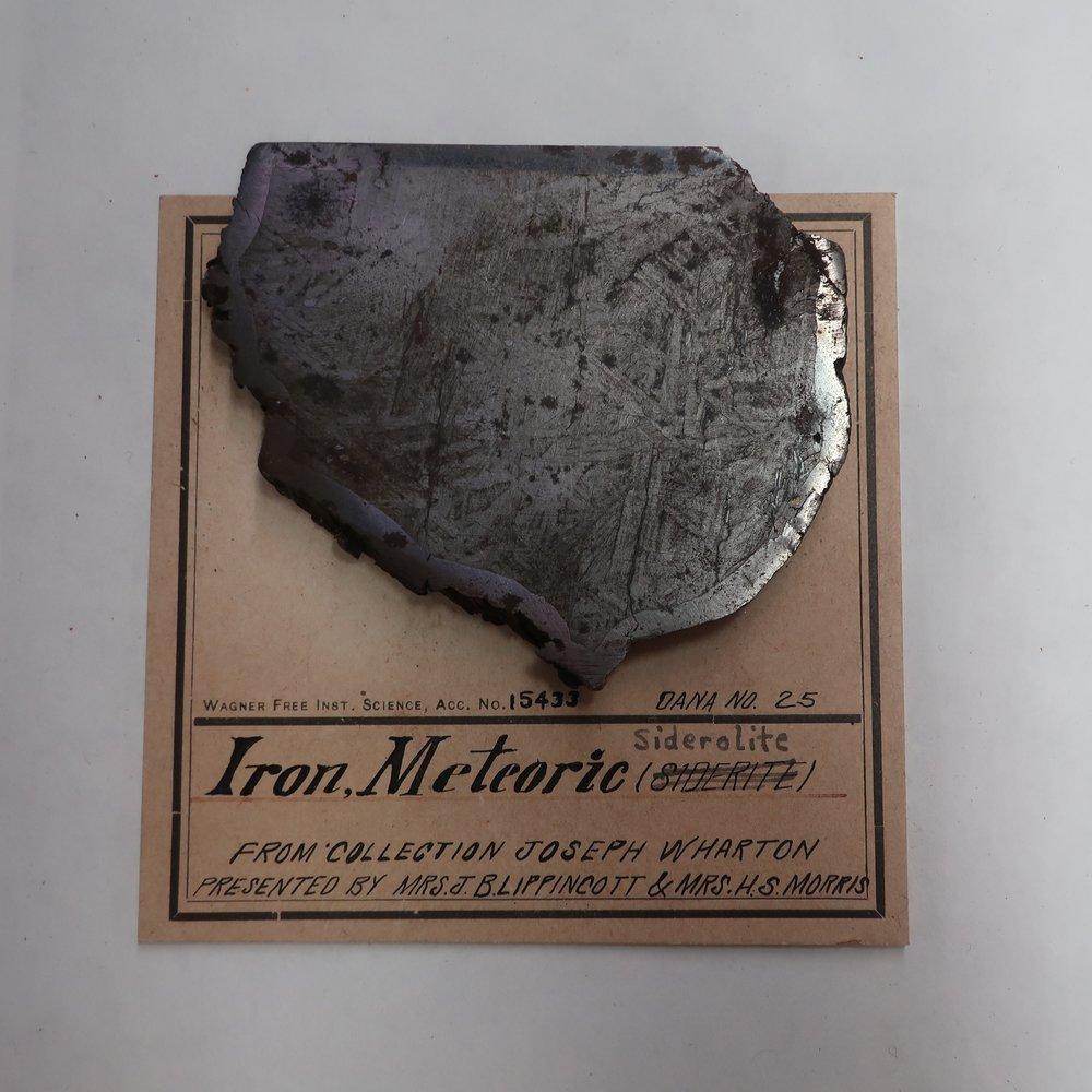 Iron Meteoric Siderolite.jpg