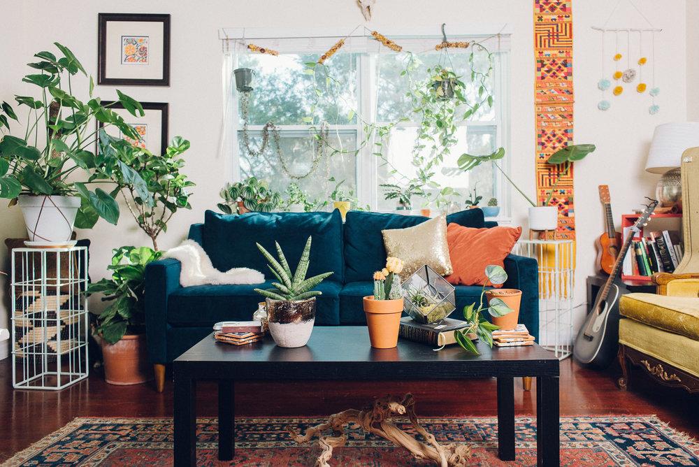 Jen-Plants-9967.jpg