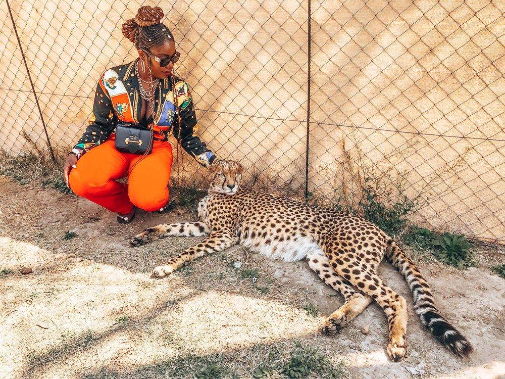 Lion & Safari Park, Johannesburg, South Africa