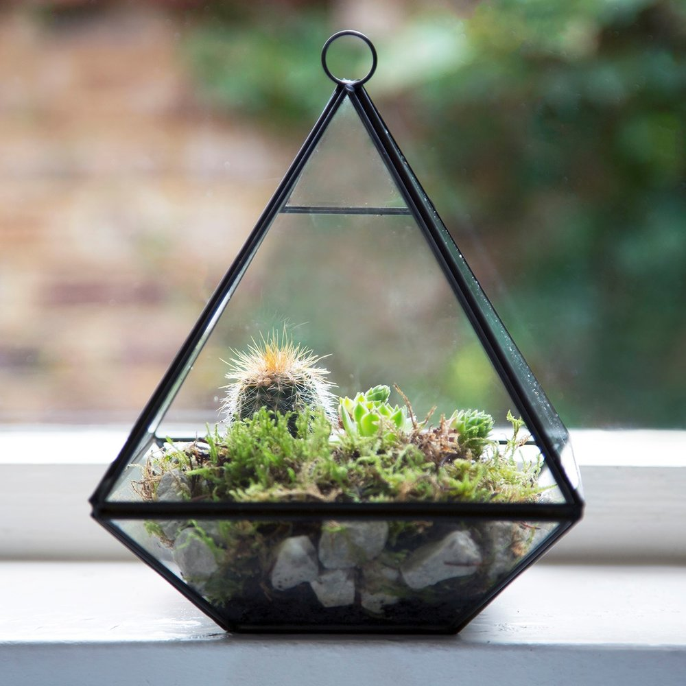 Sass & Belle Black Pyramid Shape Terrarium Planter