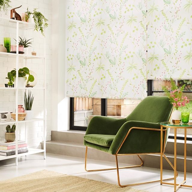 🌱🍒Spring into March🌤 with new blinds🌺! Our playful leafy🍃printed roller blind is perfect for refreshing your interior🏡. #spring #springinteriors #springinterior #interiorinspo #interiorrefresh #livingroomdecor #livingroomideas #rollerblinds #newblinds #emeraldgreen #newhome #homewares #bifolddoorblinds #homeinspo #dailydecordose #dailydecordetail #homeatlast #stylishhome #sundayvibes