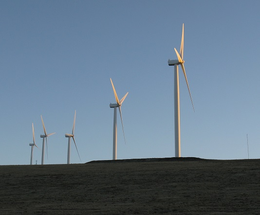 wind_turbines-jan09-karen_pics-003.jpg