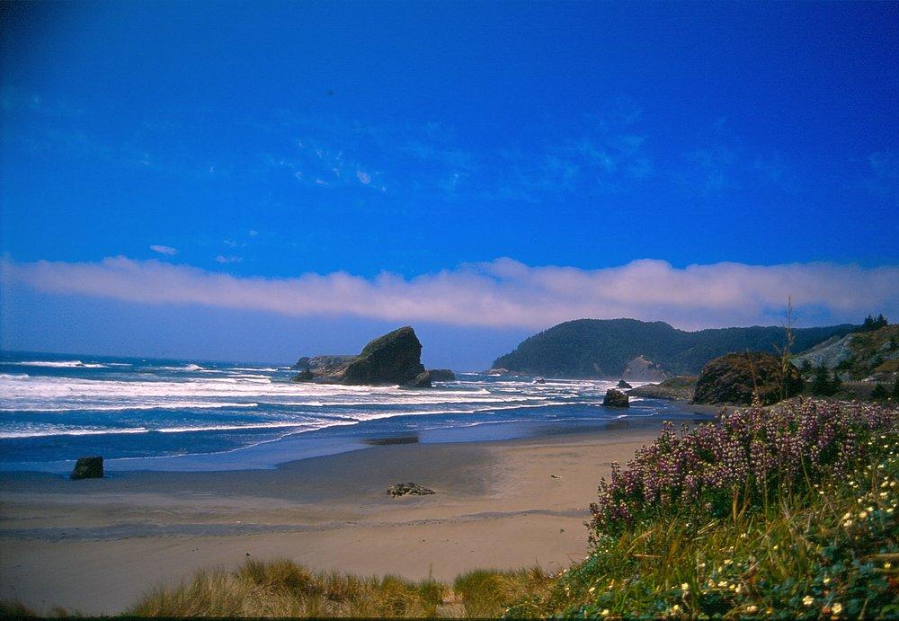oregon-coast-4.jpg