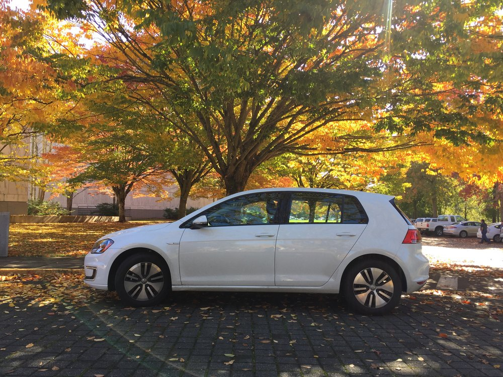 egolf-fall-2.jpeg