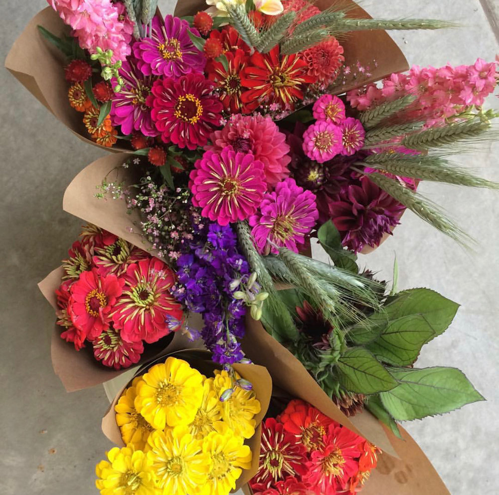 Flower Subscriptions -