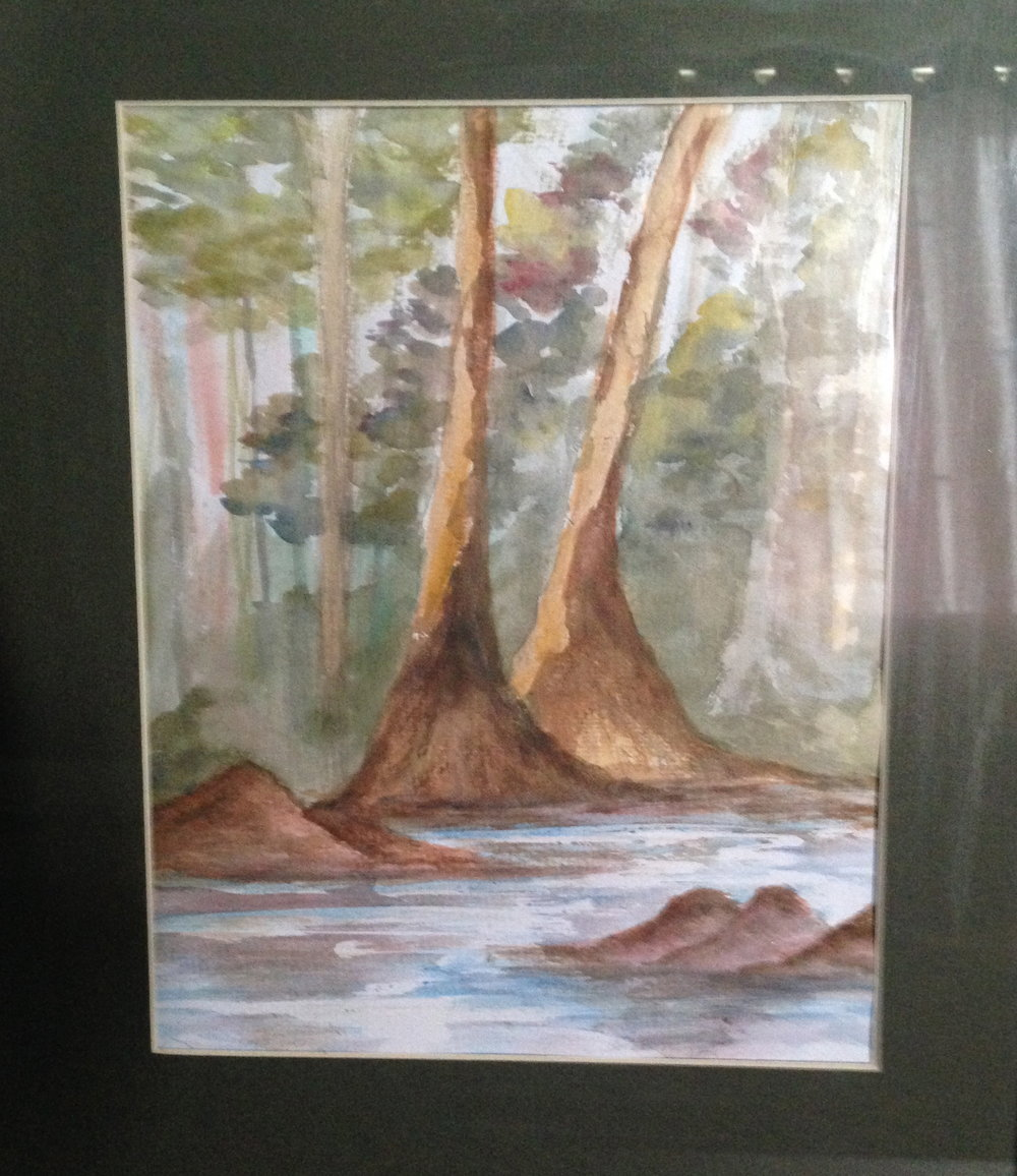 TREES ON THE BANK OF THE PAWEE RIVER-TOTBOTPR2016 - The pawee river on a nutmeg estate in toco Trinidad