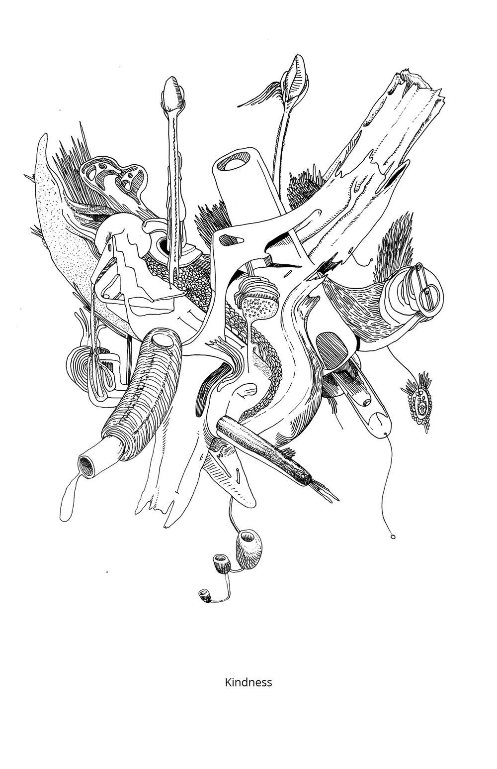 Organisms26.jpg