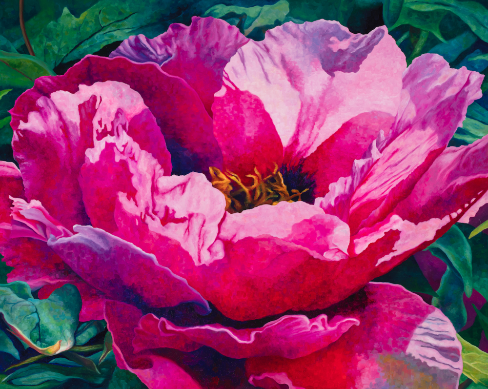 "Peony #1  oil on wrapped canvas  30"" h x 24"" w x 1.5"" d"