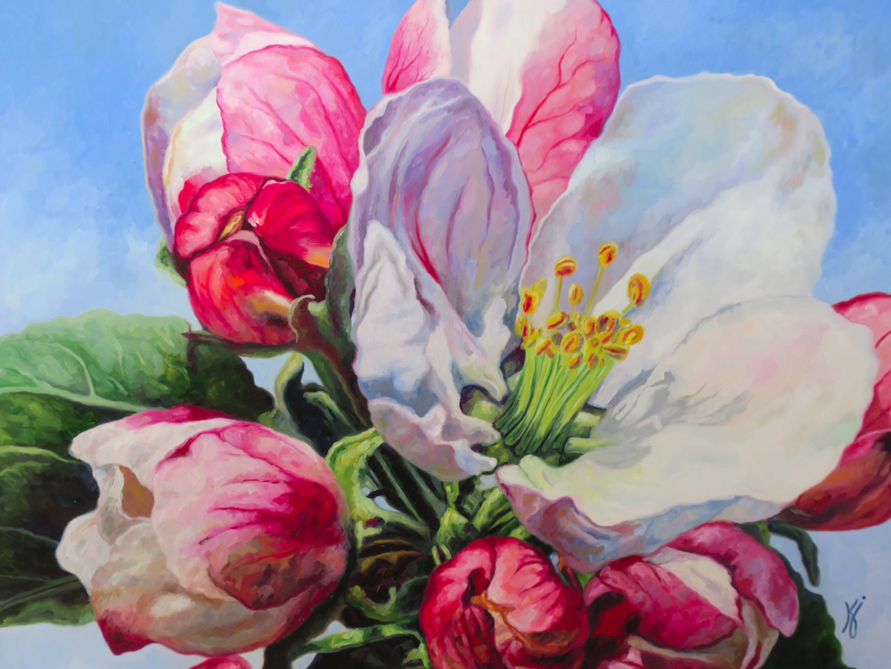 "Apple Blossoms #2  Oil on wrapped canvas  40"" h x 30"" w x 1.5"""
