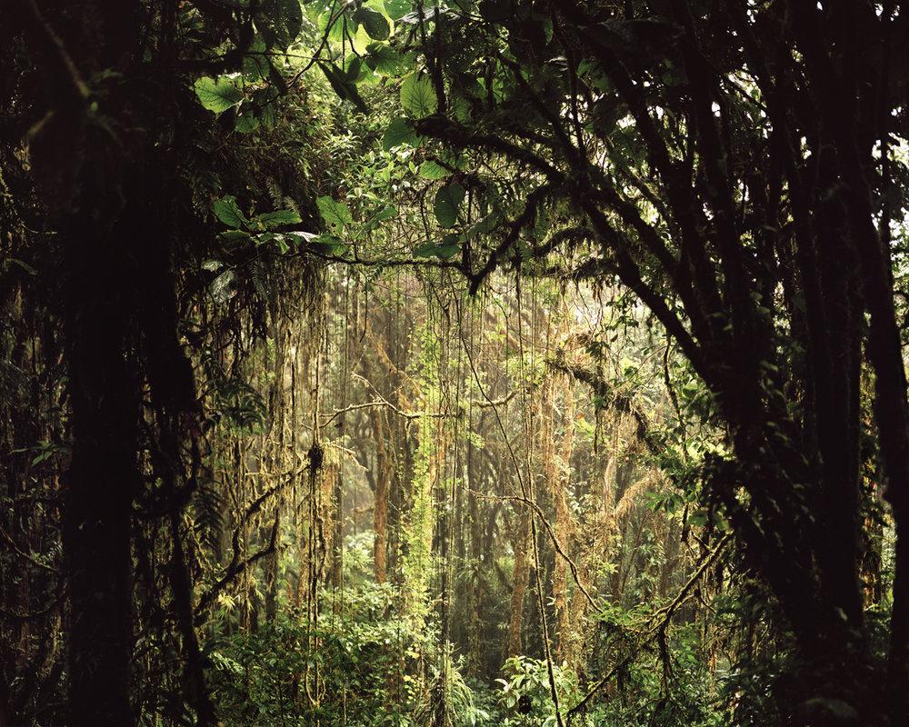 Costa_Rica_1.jpg
