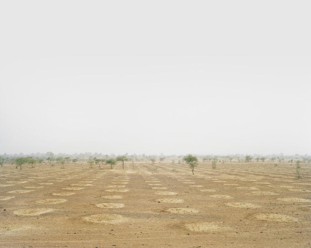 Niger_1.jpg