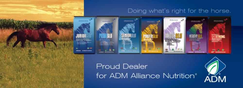 Adm dealer 1.png