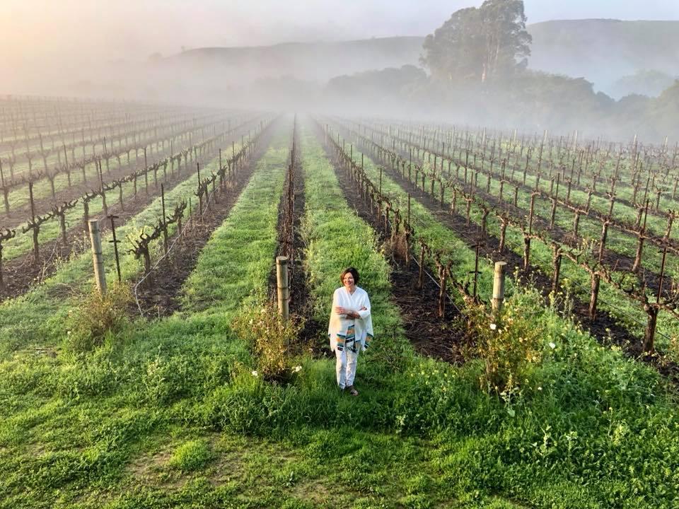 Heidi-Kuhn-Roots-of-Peace-ROP-vineyard.jpg