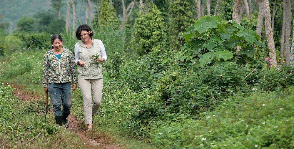 Heidi-Kuhn-Roots-of-Peace-Quang-Tri-Vietnam-path-pathway.jpg