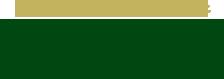 bg-logo-green_0.png