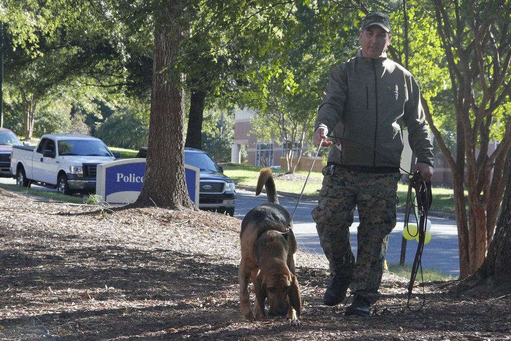 20 bloodhound heidi.jpg