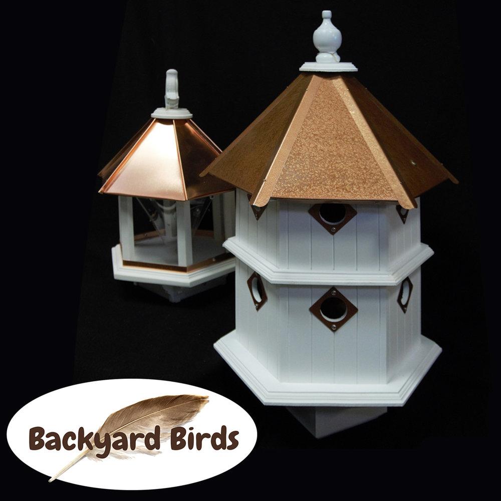 Backyards Birds