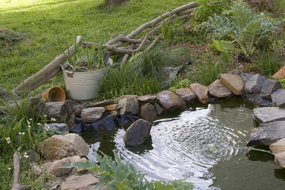 habitat water.jpg
