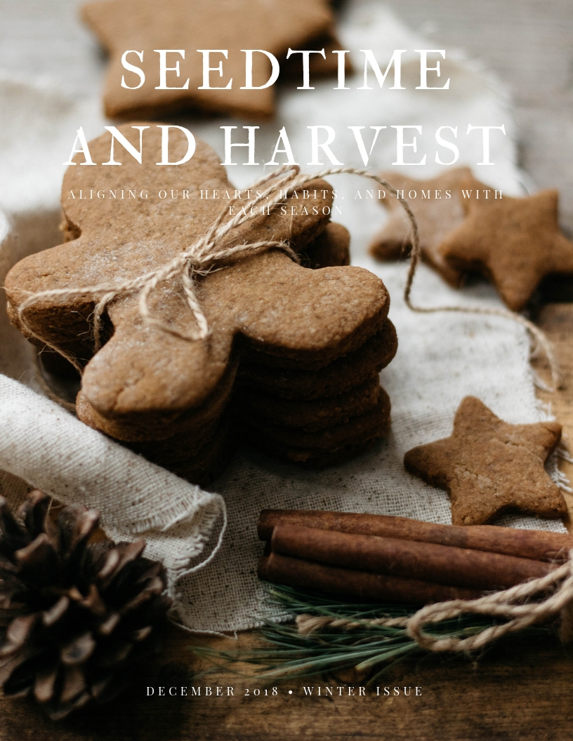 align your heart, habits, and home with each season - Seedtime and Harvest is a digital publication by Kaetlyn Anne released each season. Each issue is full of tips, recipes, guides, and inspiration to help you sync into the rhythms of each season.