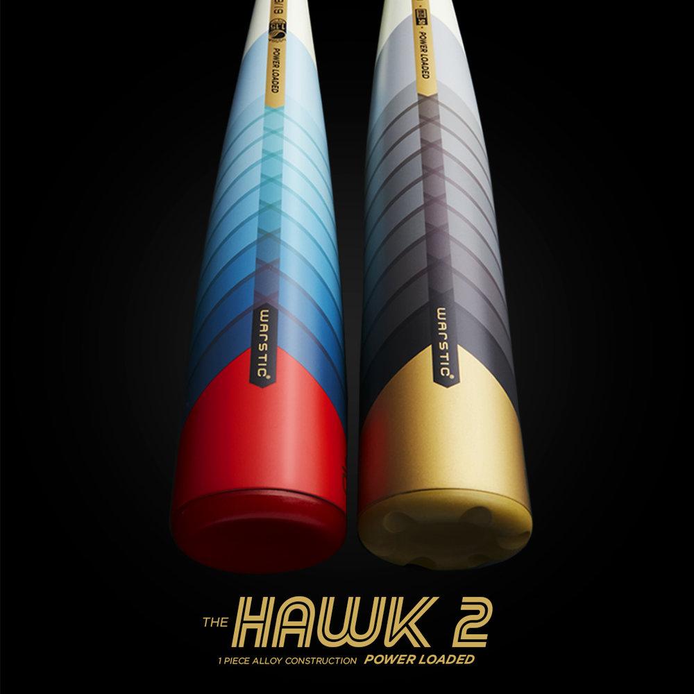 Hawk2_Combo_SquareArtboard 4.jpg