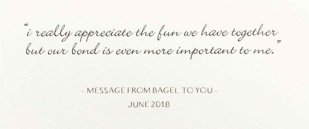 message-Bagel-to-person.jpg