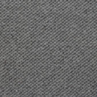 Silver Grey 411