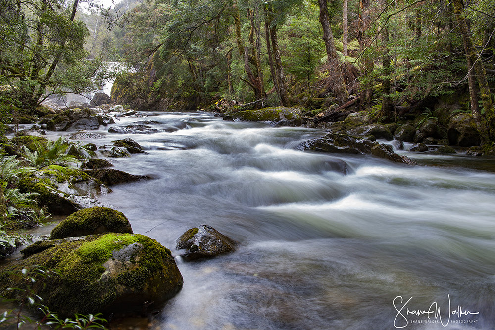 Arm River
